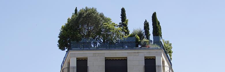 construire un toit terrasse Martigues